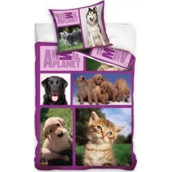 Pościel dziecięca Animal Planet Psy i Koty CARBOTEX rozmiar 160x200 cm