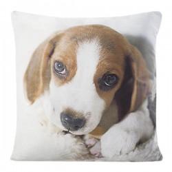Poszewka dekoracyjna Animal 33 Pies Beagle EUROFIRANY rozmiar 40x40 cm