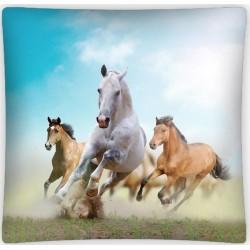 Poszewka dziecięca Konie 540 DETEXPOL rozmiar 40x40 cm